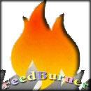 Как подключить свой сайт к сервису Feedburner | RSS подписка