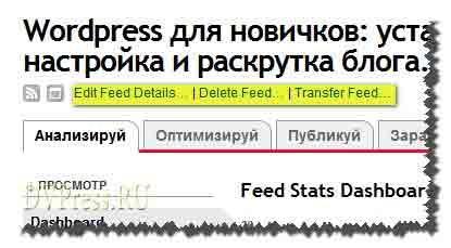 Счетчик FeedBurner. Сервис FeedBurner и настройка RSS.
