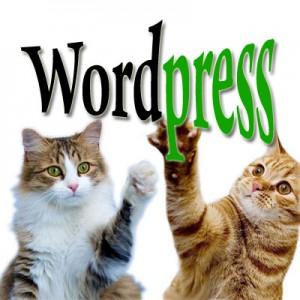 Автоматическое и ручное обновление WordPress