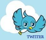 Что такое твитер (Twitter)?