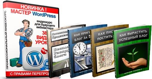 "Обучающий видео курс ""Мастер WordPress"", 38 видео уроков по WordPress"