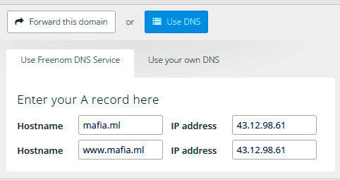 Подключение домена к Freenom сервису