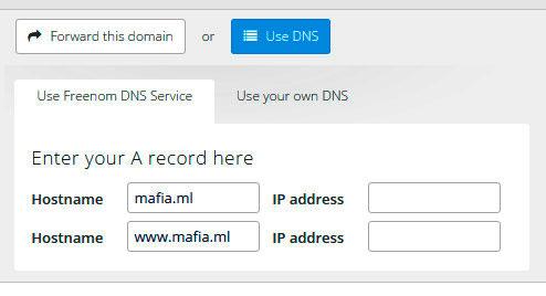 Подключаем домен к DNS серверам