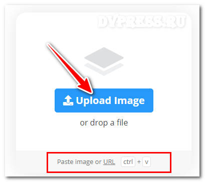 убрать фон с фото онлайн бесплатно